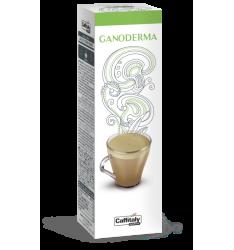 10 Capsule Ecaffè CAFFE' VERDE E GANODERMA Sistema Caffitaly System